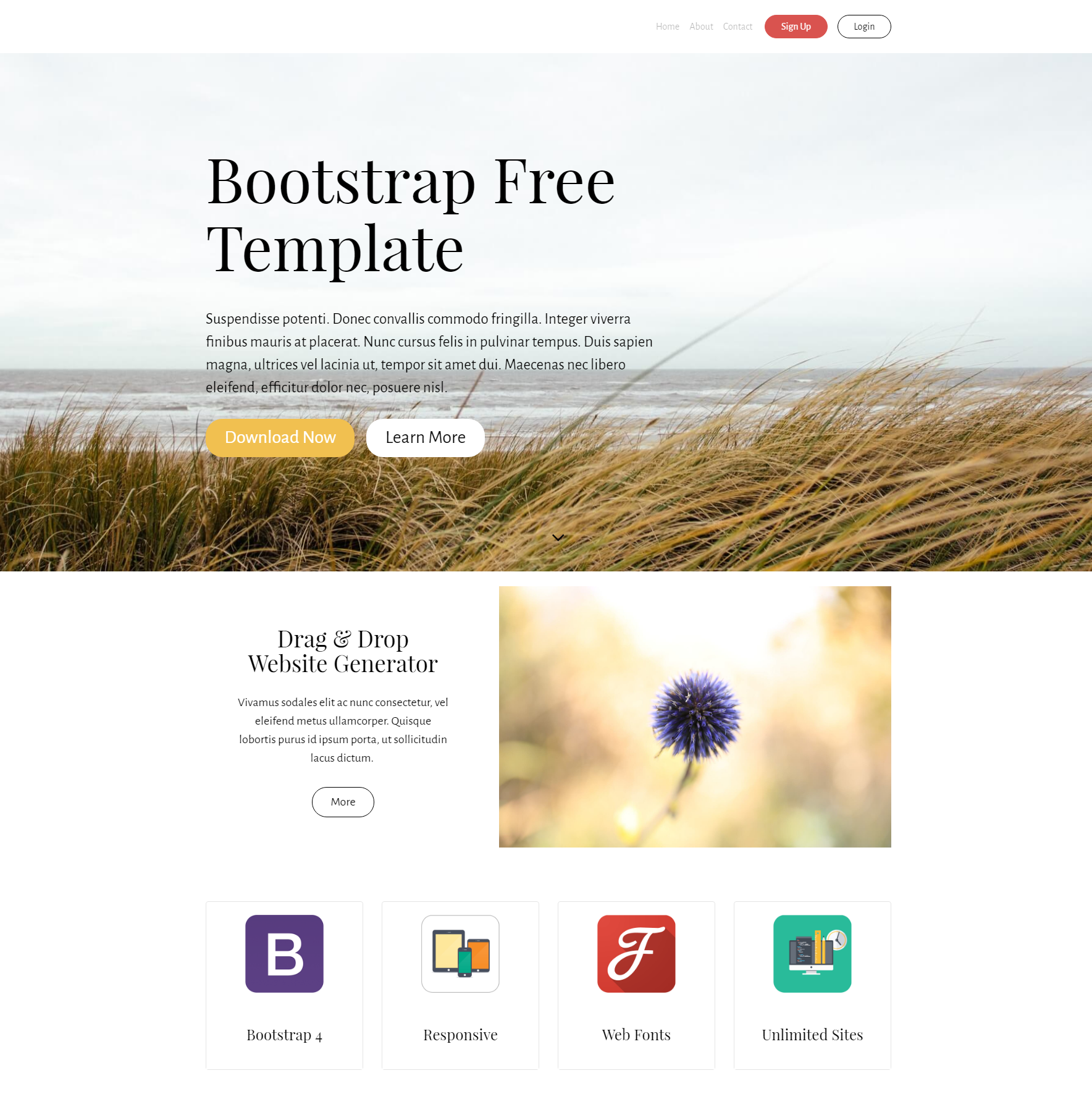 Free Bootstrap PurityM Templates