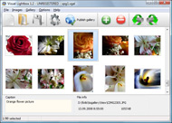 how to create a window widget Java Web Photo Gallery