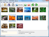 photo album software automatic caption